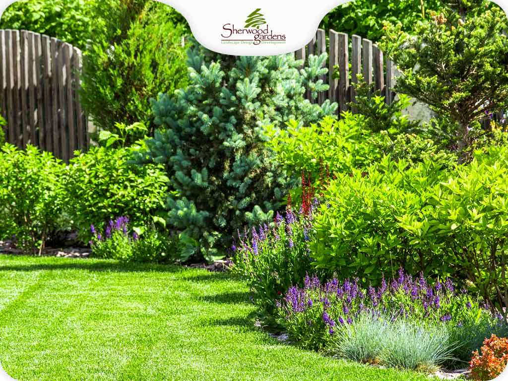 Best Plants for a Low-Maintenance Landscape