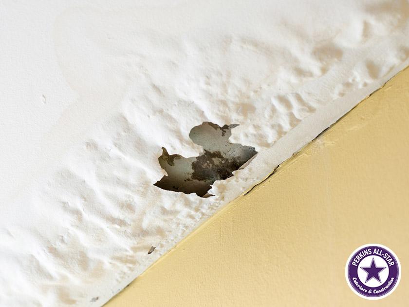 ceiling roof leak