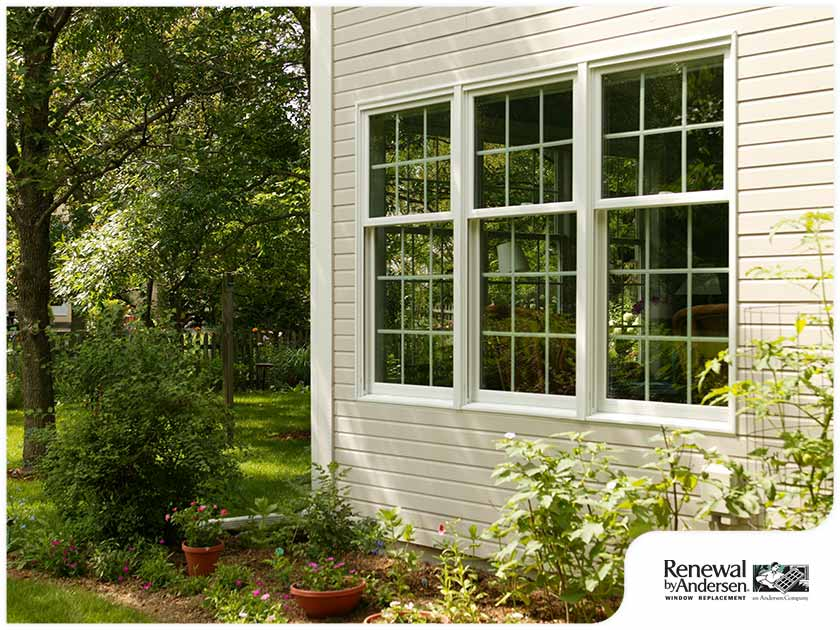 new windows in spring