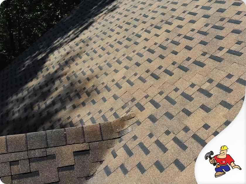 window contractor roofing repair