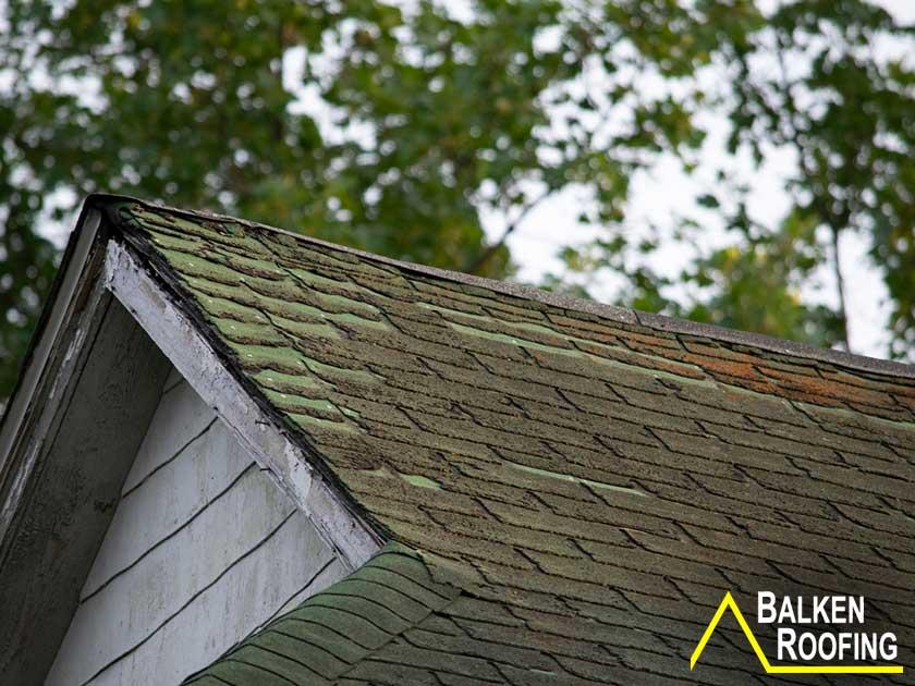 Asphalt shingle roof with organic growth on surface