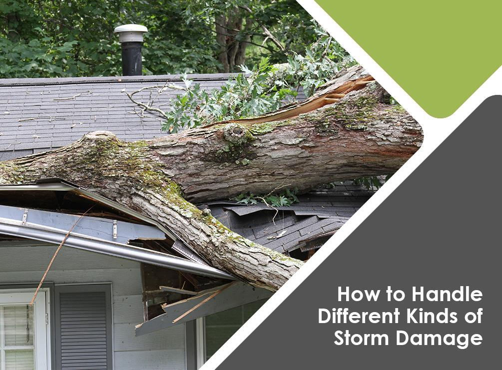 How to Handle Different Kinds of Storm Damage