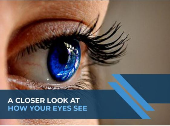 A Closer Look at How Your Eyes See