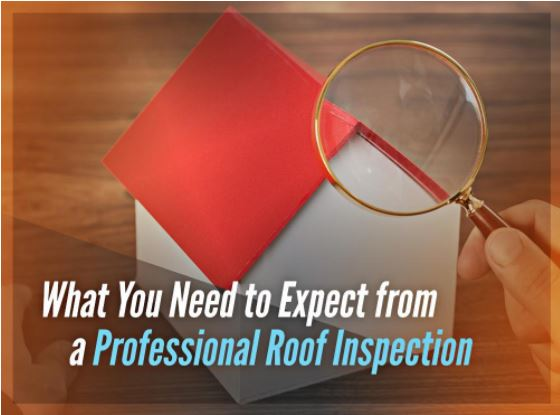 What You Need to Expect from a Professional Roof Inspection