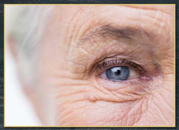 The Two Major Types of Age-Related Macular Degeneration