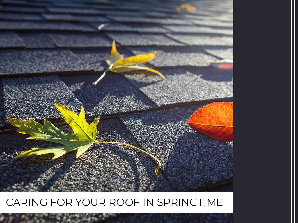 Roof in Springtime