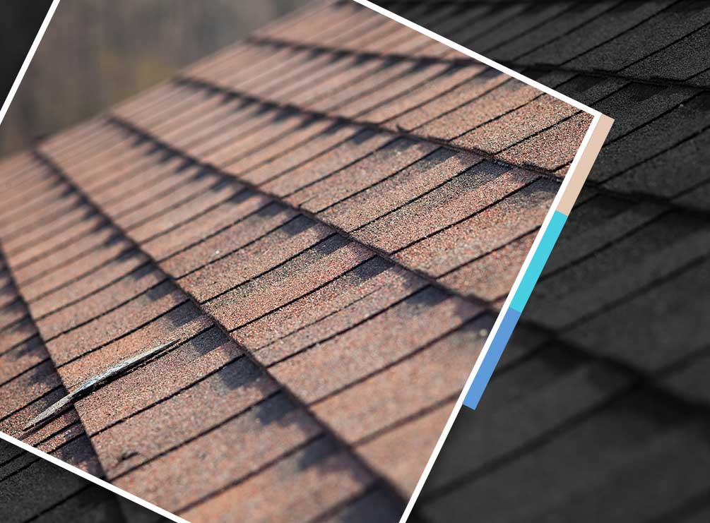Roof Cleaning and Repair