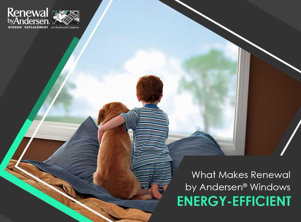 What makes renewal by andersen windows energy efficient for What makes a window energy efficient