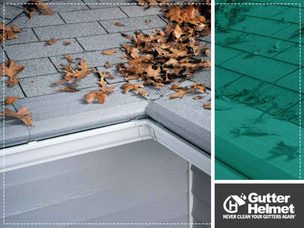 Why Gutter Screens Are Not a Good Investment