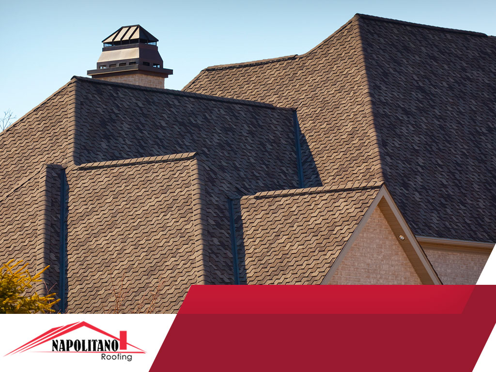 Forces and Conditions That Affect Your Roof's Lifespan