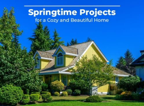 Springtime Projects